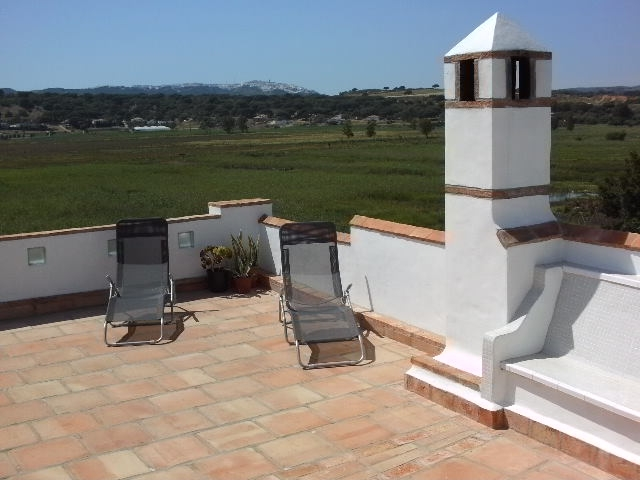 relax on the roof terrace